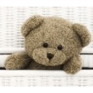 小小的熊熊