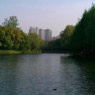 张龙19834