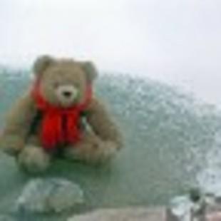 小熊之家博客