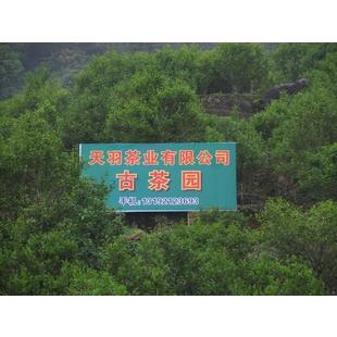 潮州市天羽茶业