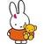 luosa_rabbit