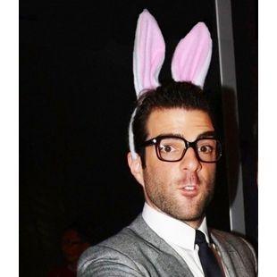 姓李的兔子