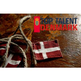 丹麦留学就业直通车
