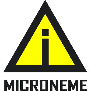 微线体MI