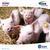 帝斯曼动物营养与保健