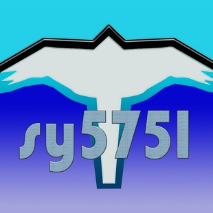 sy5751