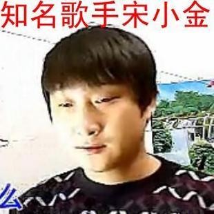 宋小金官方视频