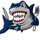 葮劔飝-鲨鱼