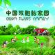 中国双胞胎家园