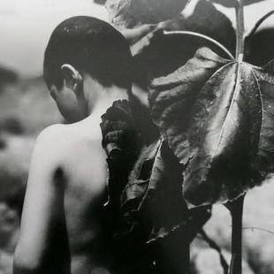 罗劬-Chyulwo