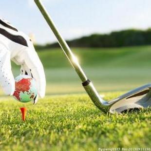 高尔夫爱好者-订阅并收藏免费看