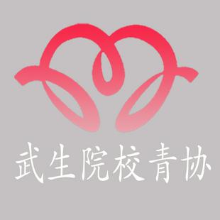 武汉生物工程学院青年志愿者