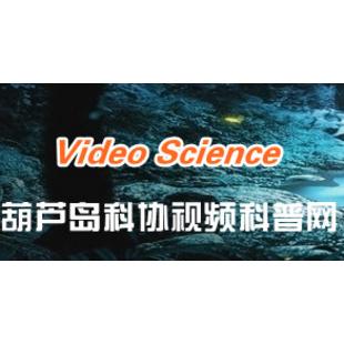 葫芦岛视频科普