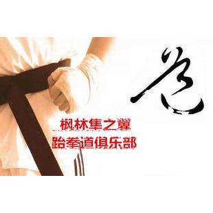 枫林隼之翼跆拳道