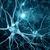 神经元互动科技