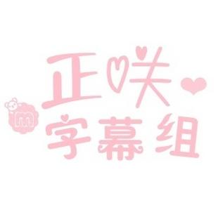 正咲字幕组