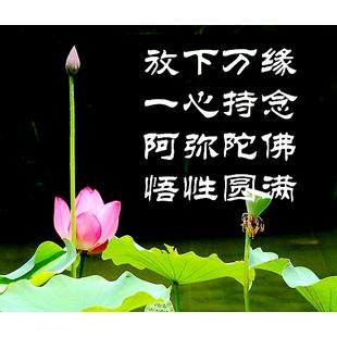 邢台净土寺