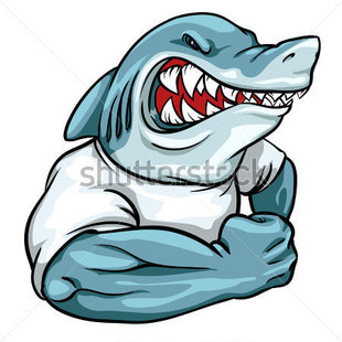 死壯的鲨鱼