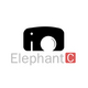 ElephantC_studio