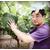 种好葡萄找北农华