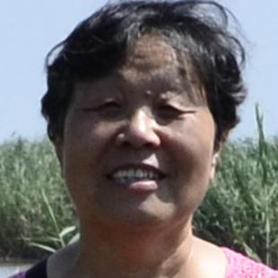 戈戈书香妹