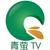 北林青萤电视台