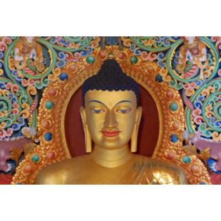 噶玛噶举中国论坛