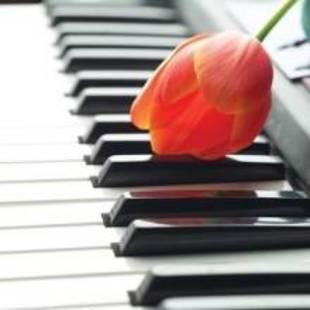 钢琴没地方放
