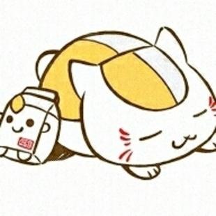 Amy酱的猫