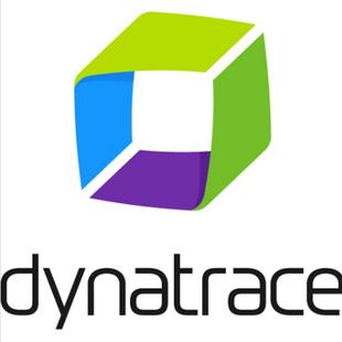 Dynatrace灵迹