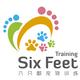 六只脚宠物训练sixfeettraining