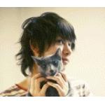 公主家的猫