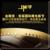 金微奖国际微电影节V