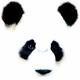 熊猫其实叫猫熊