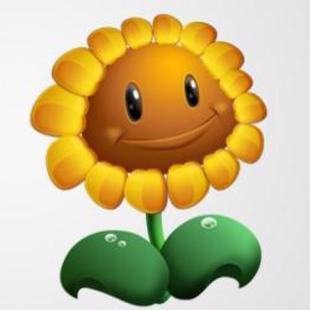小向日葵22