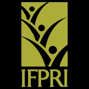 国际食物政策研究所