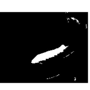 水中竹舞0_0