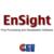 EnSight