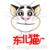 东北猫系列视频