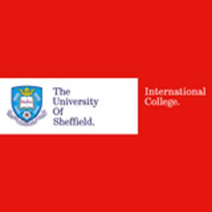 谢菲尔德大学国际学院
