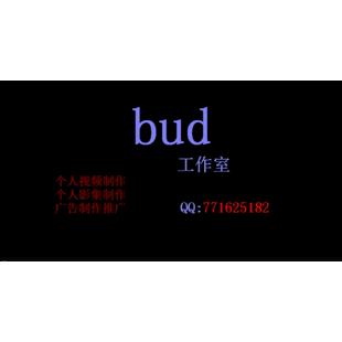 bud工作室