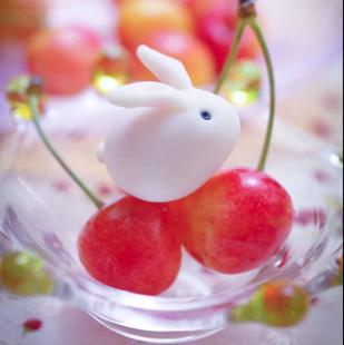 梦幻兔兔恋