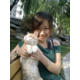 小,猫。83702836