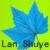 蓝树叶花坊丝网花