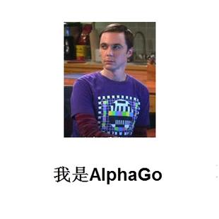 我是AlphaGo
