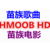 HMOOB苗影MV