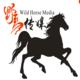 韶关野马摄影团队