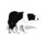 伯德庄园边境牧羊犬