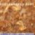 免费蘑菇栽培种植视屏专利n030cn