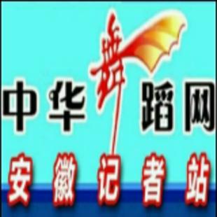 国标舞安徽站飞飞